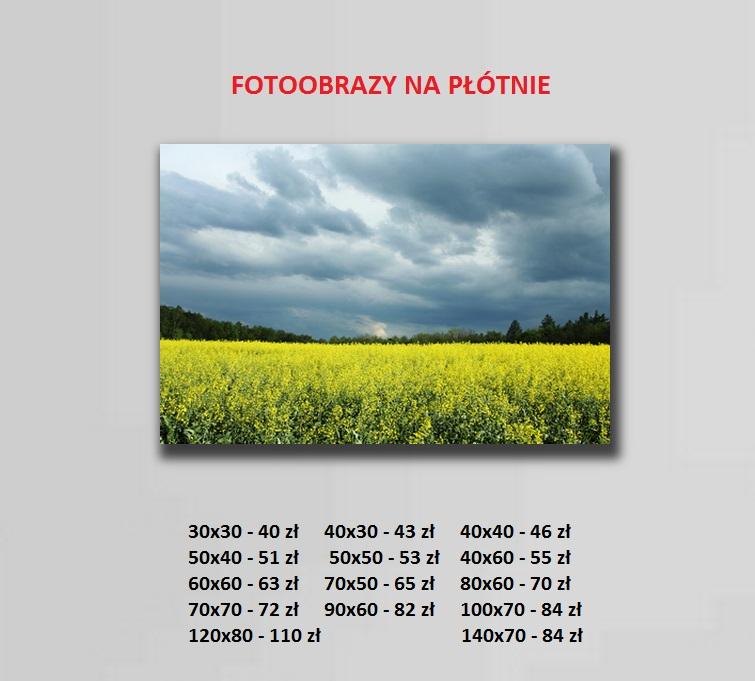 fotoobrazy-cennnik